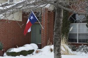image: Curnow's flag