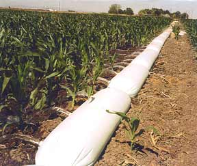 image: irrigation pipe